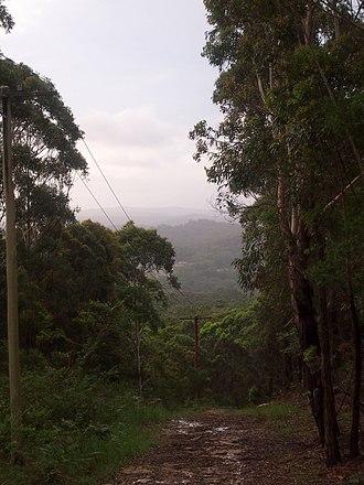 Lisarow, New South Wales - Image: Lisarow panoramio (1)