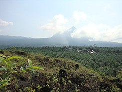 Little Mount Cameroon (Etinde).jpg