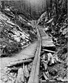 Log chute and corduroy road, St Joe National Forest, Idaho, ca 1911 (INDOCC 308).jpg