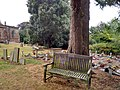 Long shot of the bench (OpenBenches 8035-1).jpg