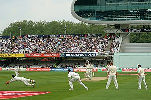 A view of a portion of a cricket ground during a Test match with a crowd in the background