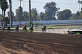 Los Alamitos Sept 2014 IMG 6718 (15131278887).jpg