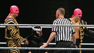 Mascarita Dorada - El Torito along Diego and Fernando during a WWE house show in 2013
