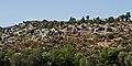 Lycian tombs Xanthos IMGP8884.jpg