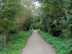Midland and South Western Junction Railway - Former trackbed of the railway south of Swindon
