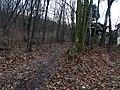 Máslovice-Dol, cesta na Větrušice.jpg
