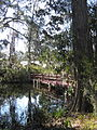 Magnolia Plantation and Gardens - Charleston, South Carolina (8555377767).jpg