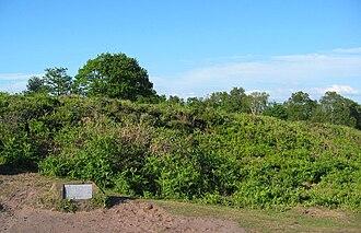 Bickerton Hill - Rampart of Maiden Castle