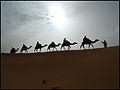 Marruecos - Morocco 2008 (2864137103).jpg
