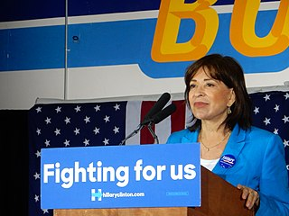 Mary Salas American politician