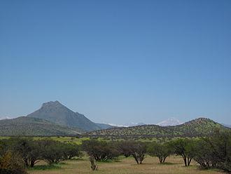 Mediterranean forests, woodlands, and scrub - Image: Matorral Cerro Aconcagua