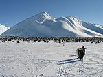 Matt Antarctic 2005 062.jpg