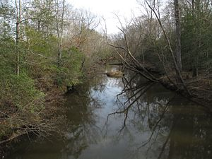Mattaponi River - The Mattaponi River, upstream of its confluence with the South River