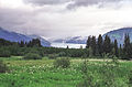 Mendenhall Glacier01(js).jpg