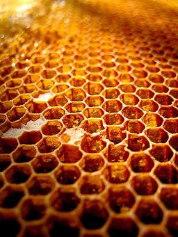 Mesilaskärg