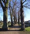 Metternich Römerstraße Friedhof (02).jpg