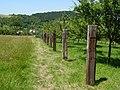 Metylovická pahorkatina, Na kopci, plot 01.jpg