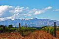 Montserrat - 73.jpg