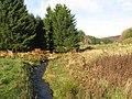 Monynut Water - geograph.org.uk - 1565366.jpg