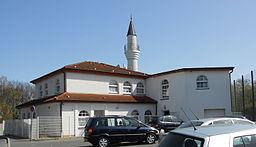 Mosche in Werl