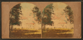 Mount Vernon. The Mansion. This was the home of Washington, from Robert N. Dennis collection of stereoscopic views.png