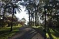 Mount Wilson NSW 2786, Australia - panoramio (5).jpg