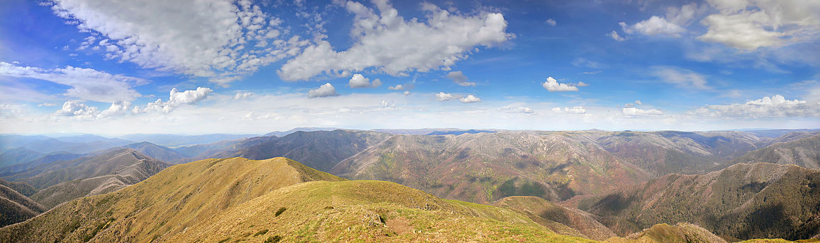 The view from the peak of Mount Feathertop, facing north-east, showing the Fainters and other mountains Mt. Feathertop444 edit.jpg