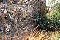 Mura medievali Militello.jpg