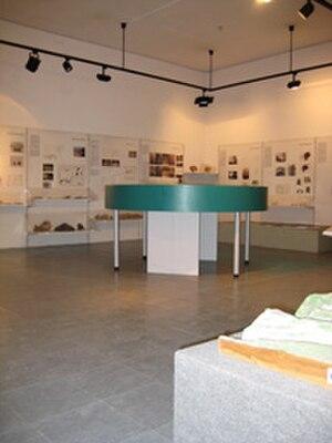 L'Esquerda Archaeological Museum - Exhibition hall