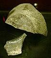 Museumkelder Derlon, Maastricht - 7e-eeuwse potscherven1.JPG