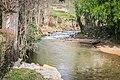 Muze river in Roquetaillade (2).jpg