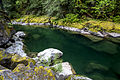 My Public Lands Roadtrip- Explore Quartzville Creek in Oregon (19163361075).jpg