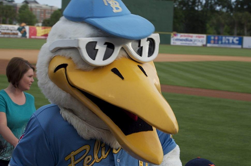 Myrte Beach Pelicans mascot Splash