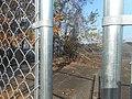 NB Old US 15-301 Bridge; Fallen Trees.jpg