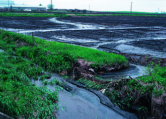 Water pollution in the United States - Topsoil runoff from farm, central Iowa, USA (2011).