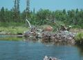 NRCSOR00023 - Oregon (5745)(NRCS Photo Gallery).tif