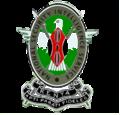 NSIS Emblem.png