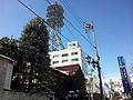 NTT EAST Matsumoto.JPG