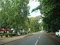 Na ulicy Zwycięstwa - panoramio.jpg