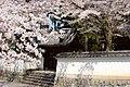 Nanzenji (3609629326).jpg
