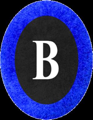 Alpine Brigade Taurinense - Image: Nappina blu Brigade supports
