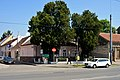 Naturdenkmal 348 Lebensbäume Siegesplatz.jpg