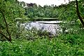 Nature Park 29.JPG