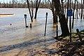 Neal Landing Apalachicola River c.jpg