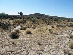 Near Villa de Arriaga, San Luis Potosi (5722698285).jpg