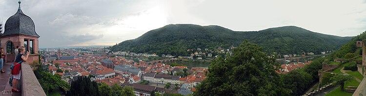 Neckar in Heidelberg.jpg