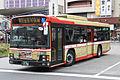 NishiTokyoBus D11222.jpg