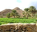 Nizwa flickr02.jpg