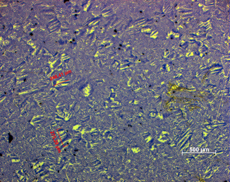 Electrical steel - Non-oriented electrical silicon steel (image made with magneto-optical sensor and polarizer microscope)