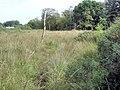 Norley - footpath 20 - geograph.org.uk - 980144.jpg